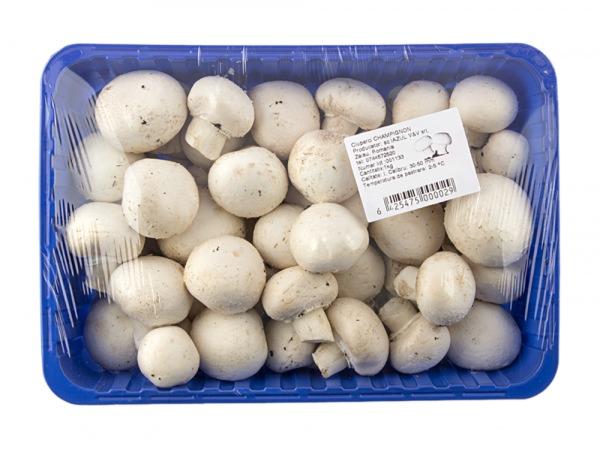 Miceliu (samanta) pentru Champignon- Pleurotus, lei - info-tecuci.ro