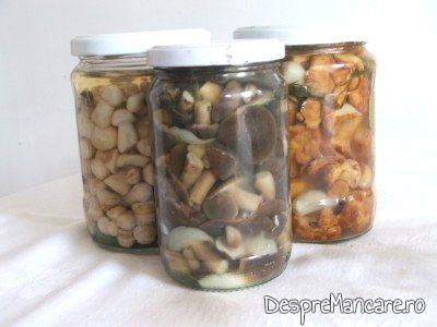 Ciuperci conservate