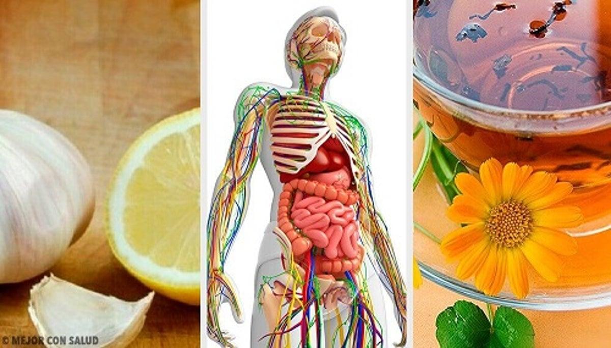 detoxifiere limfatica pareri