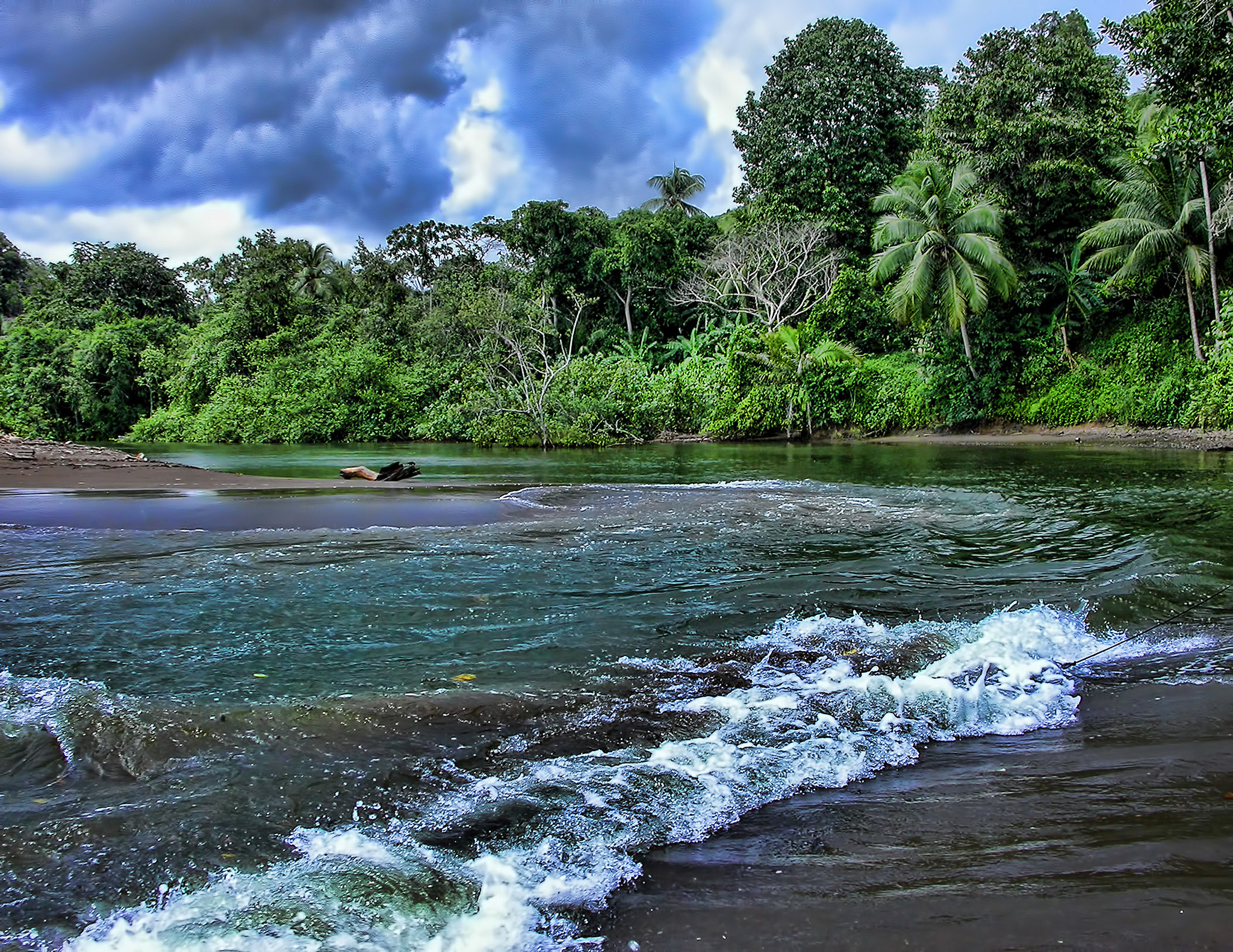 paraziți din Costa Rica
