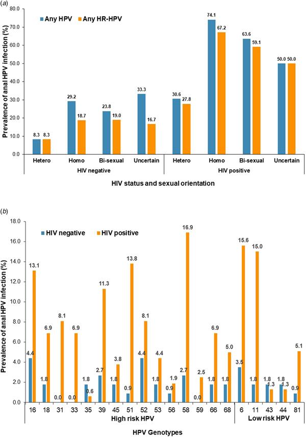 human papillomavirus infection and hiv)
