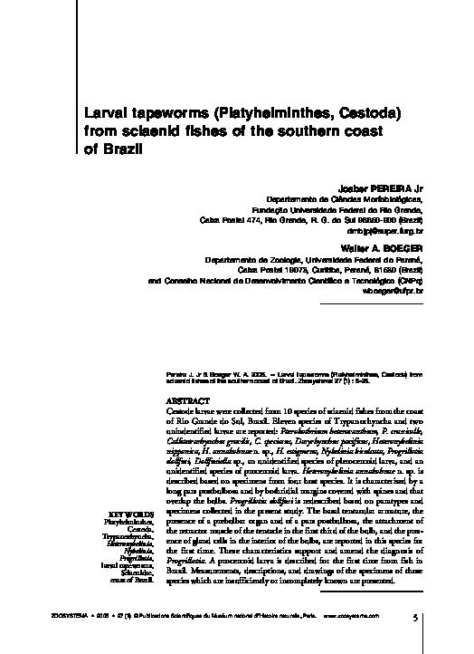 departamente de azil platyhelminthes enterobius vermicularis seat worm