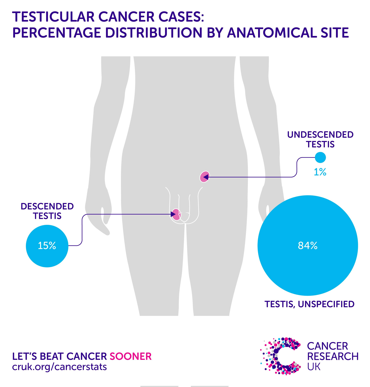 Dysbiosis ne demek. Cancer uterin menopauza Dysbiosis ne demek