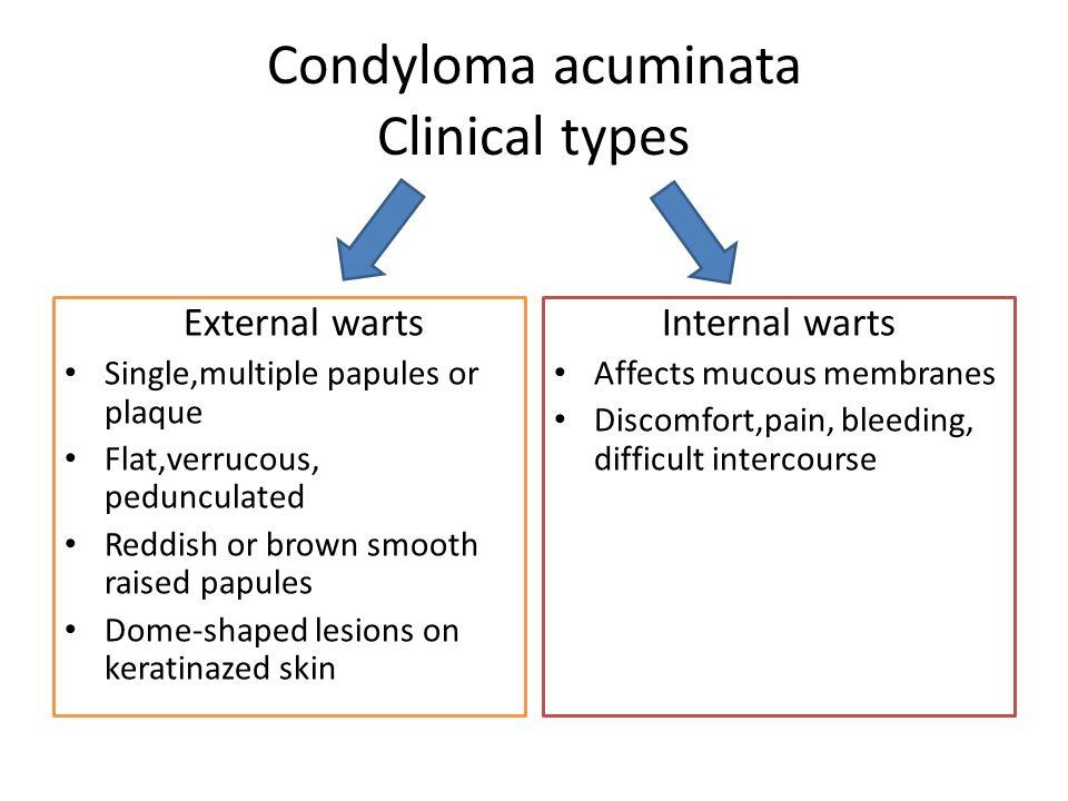 condyloma acuminata lesion)