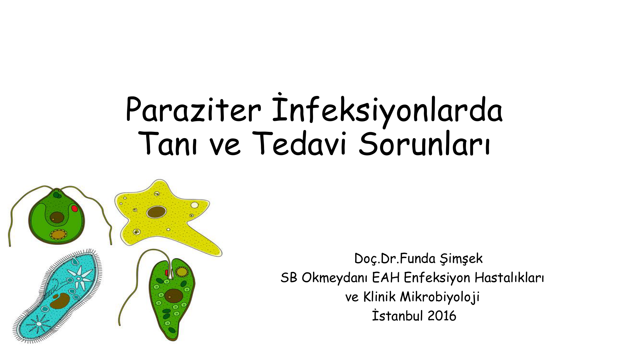 enterobius vermicularis selofan bant yontemi)