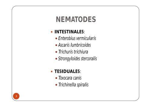 enterobius vermicularis sintomatologia