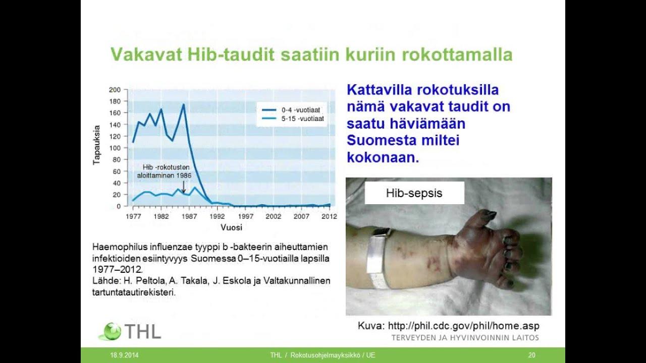 Entamoeba histolytica cyst - Paraziti cdc dpdx