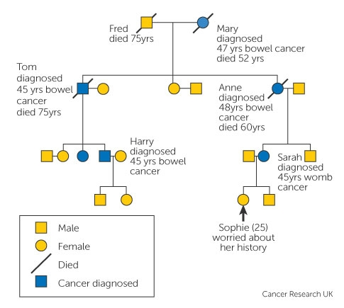 Familial cancer types