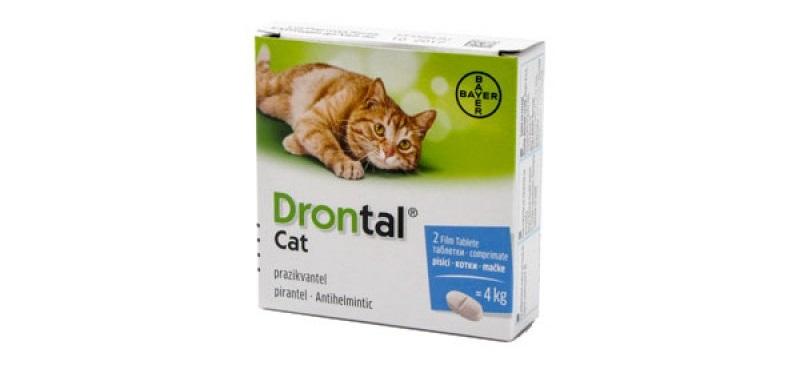 pastile de viermi pentru pisici)