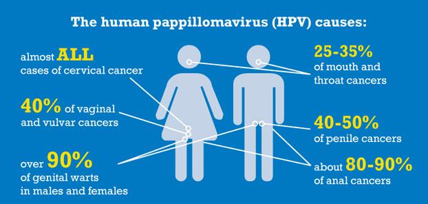 Hpv prik mannen, Virus papilloma la gi