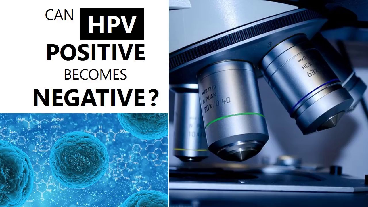 hpv virus kinderwunsch)