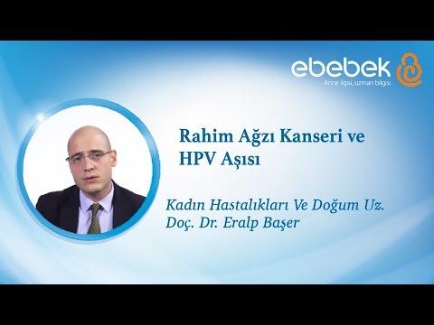 human papilloma virus zararlar)