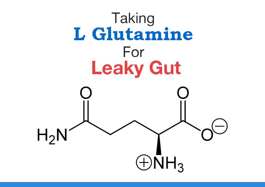 l glutamine dysbiosis)