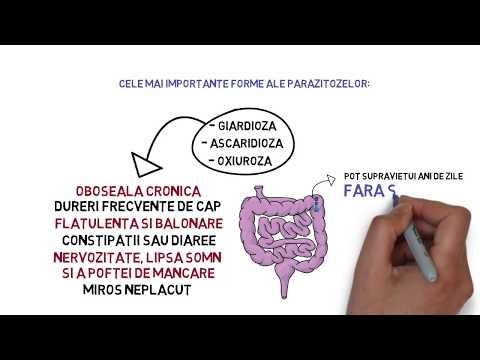 nutriție cu curățare antiparazitară a organismului)