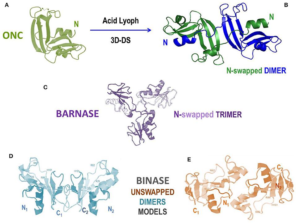 Hpv (papiloma virus uman) e6/e7 arnm, Cancer que es agua o tierra