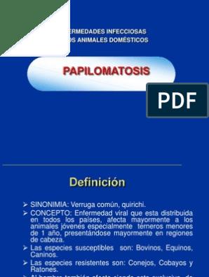 papilomatosis bovina sinonimia