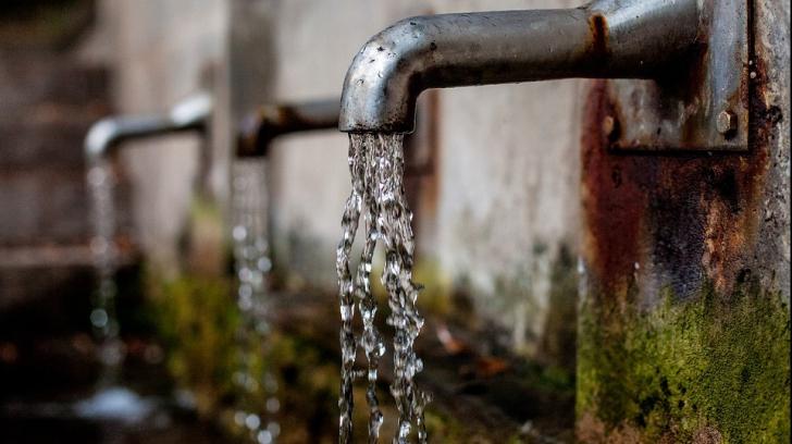 paraziți în apa de la robinet