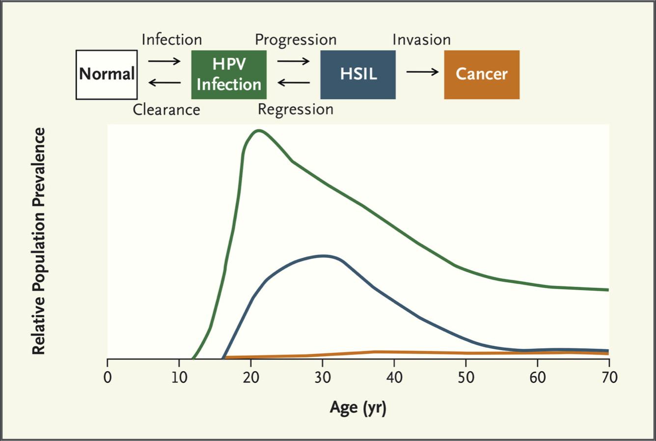 pathogenesis of human papillomavirus hpv neck tumor