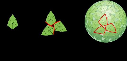 polyomaviridae papillomaviridae