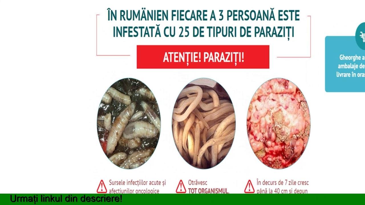 produse derivate din viermi și paraziți)