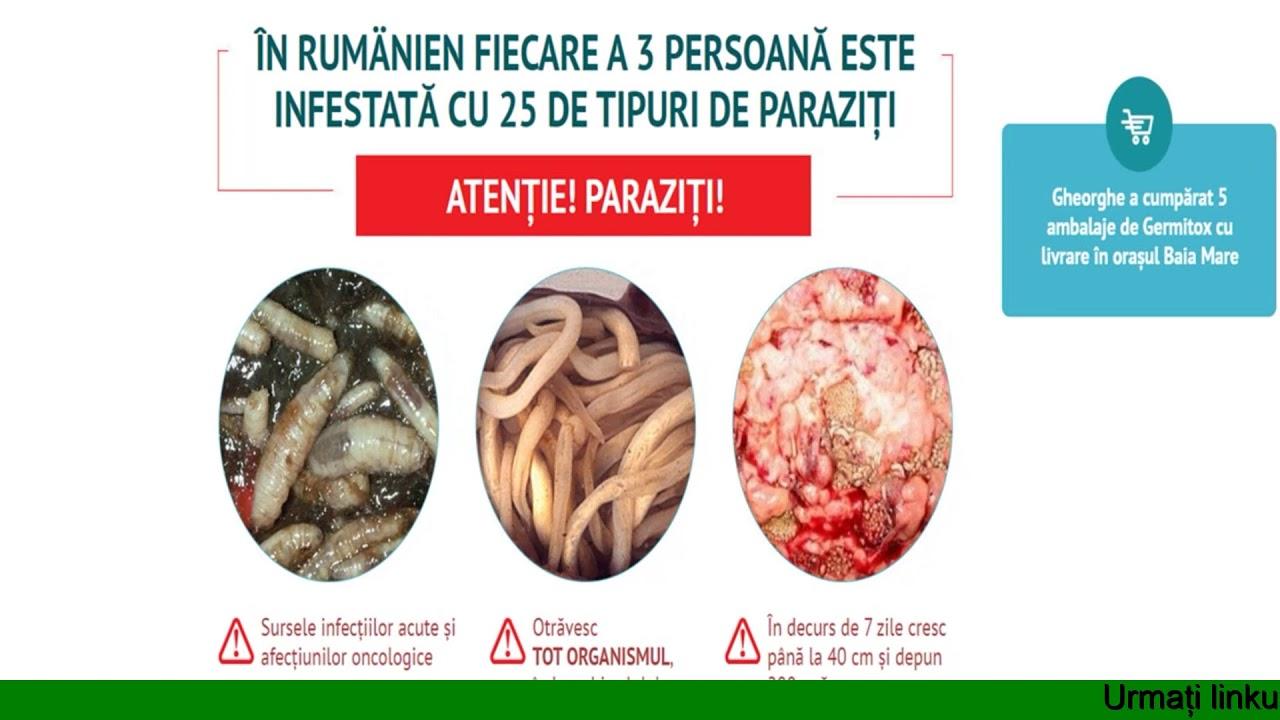 reteta pentru curatarea organismului de paraziti