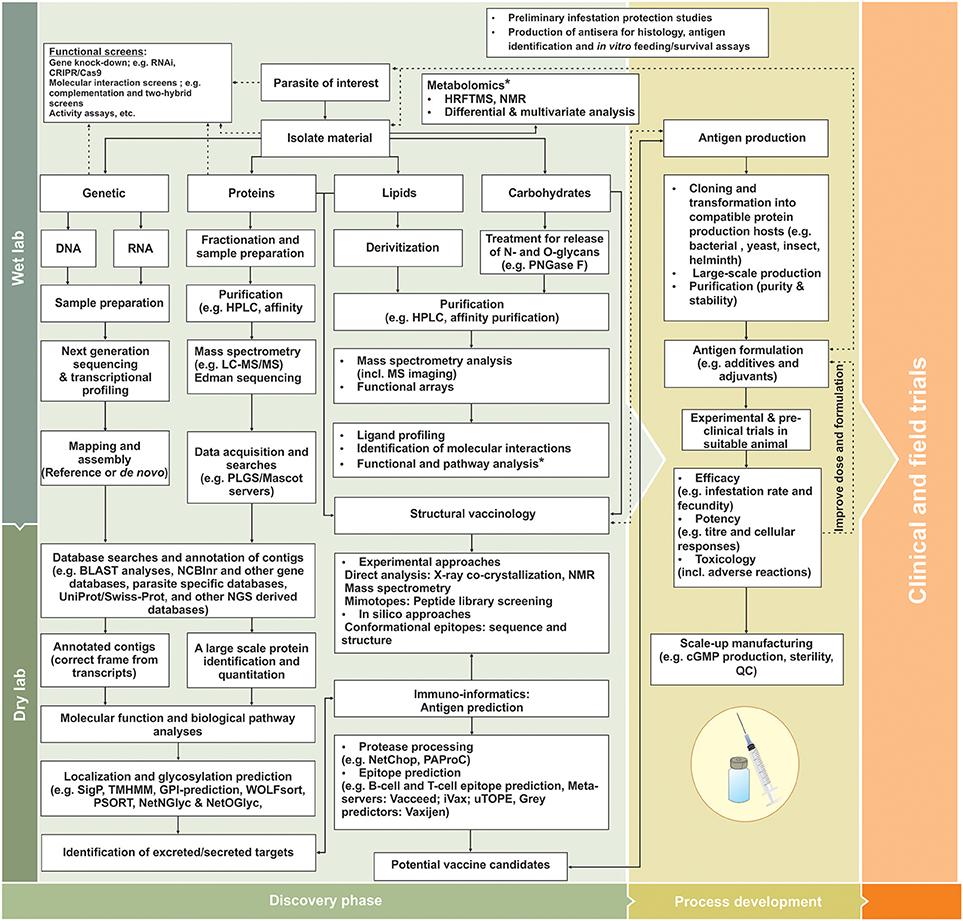 tratament helmintic ms)