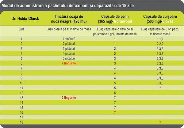 Beneficiile si contraindicatiile pelinului