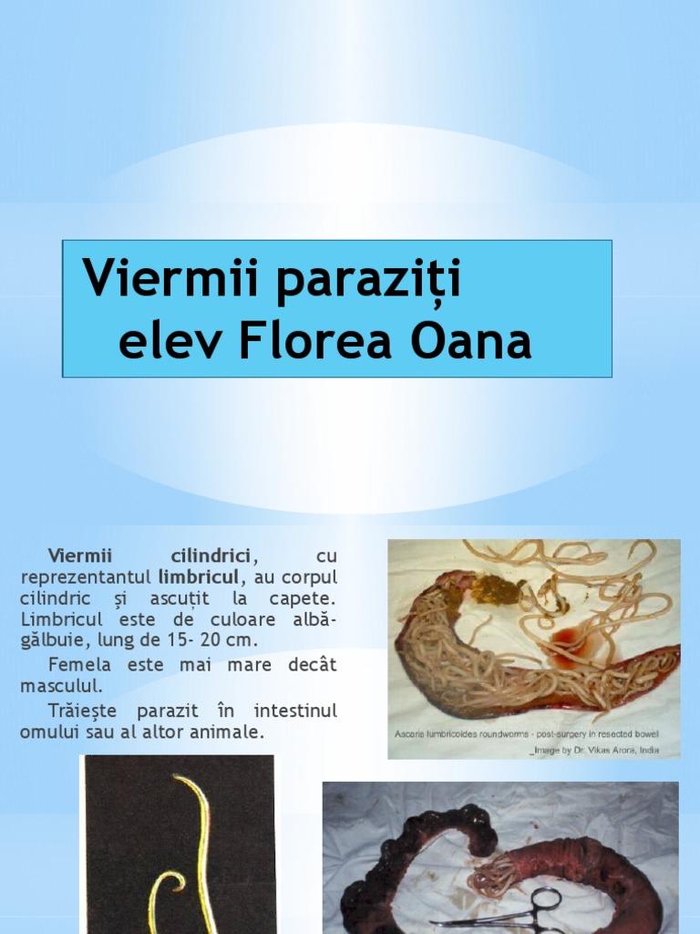 viermii paraziti sunt)