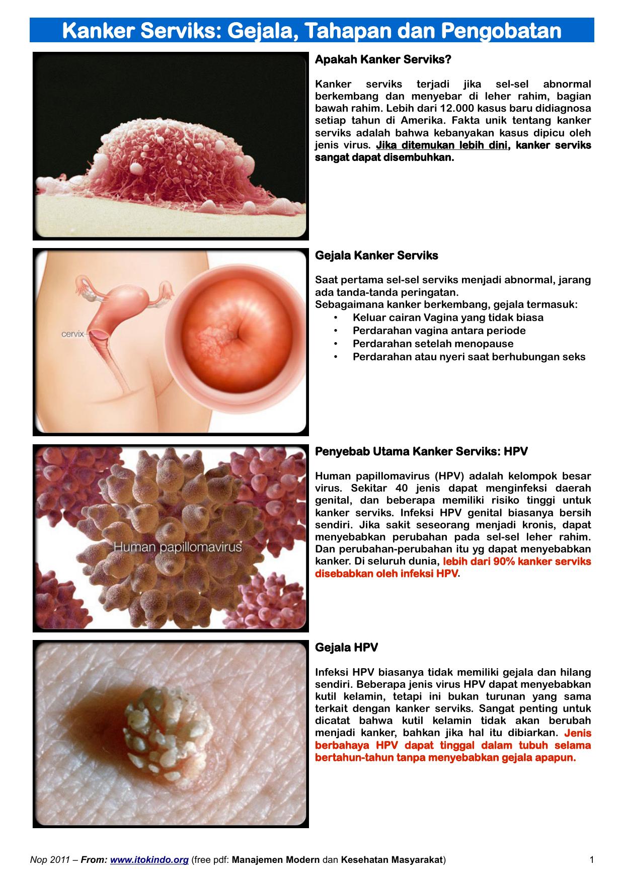 virus human papillomavirus adalah