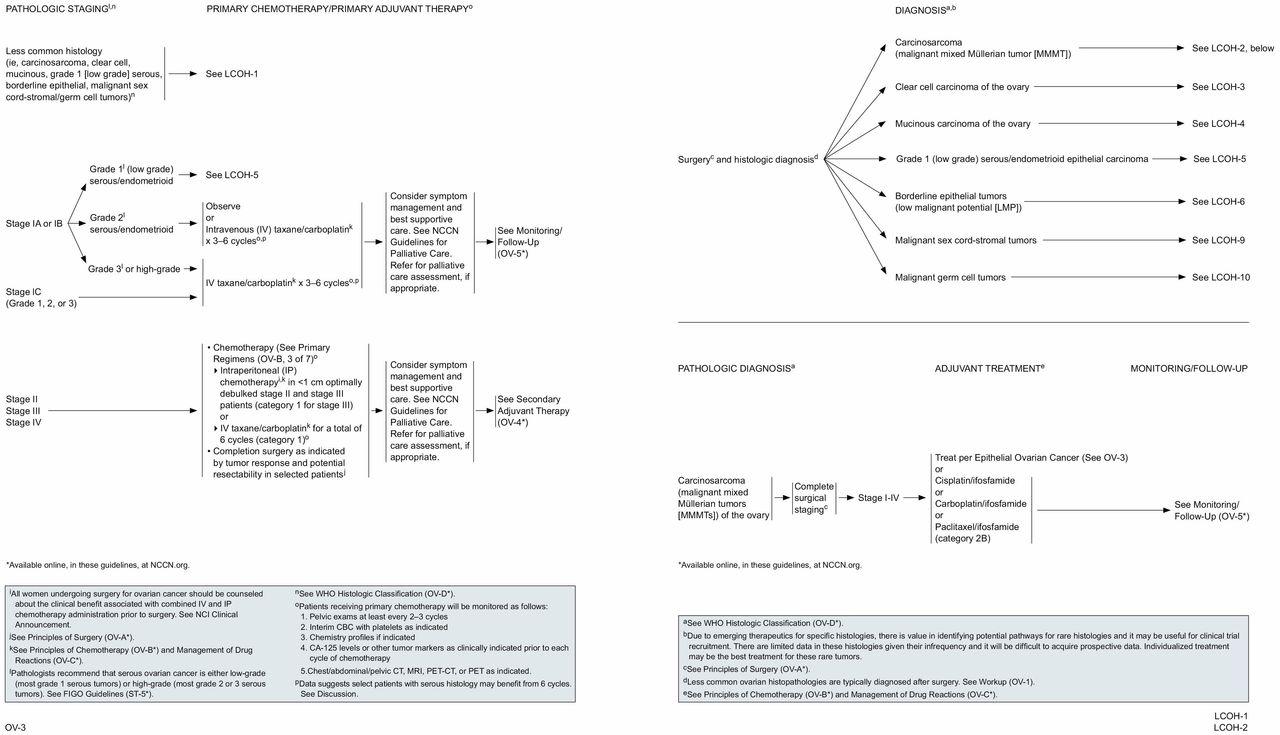 Ovarian cancer guidelines nccn. Cancerul ovarian si mutatiile BRCA