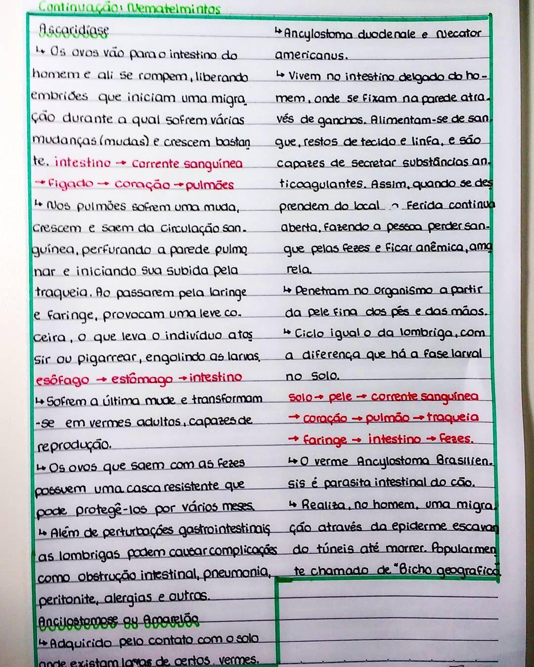 oxiuros tratamiento argentina)