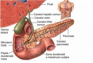 cancer al cailor biliare