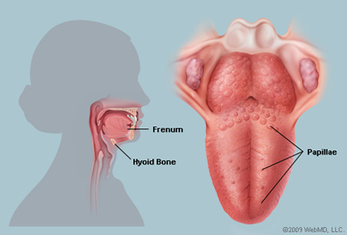 warts on tongue and throat