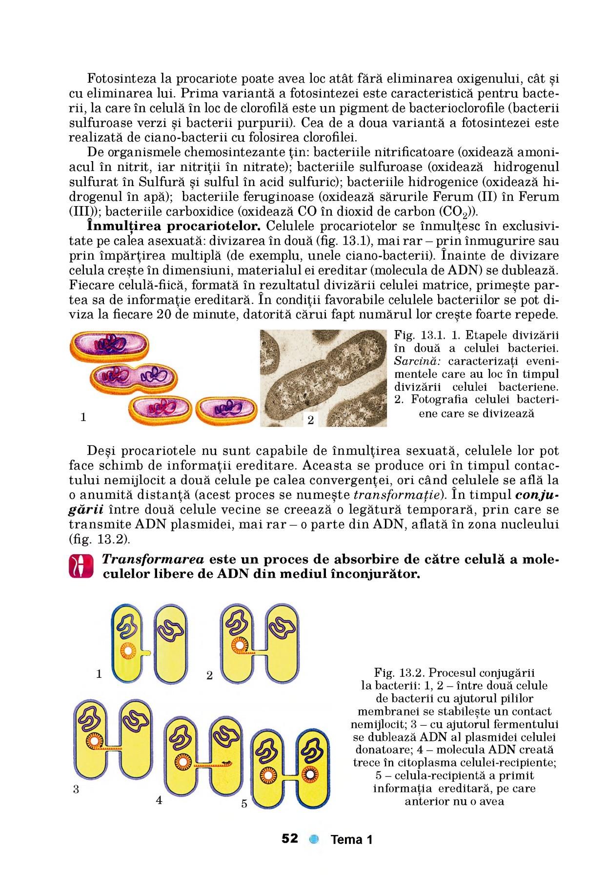 Material pentru studiul ciclurilor de dezvoltare a helmintelor