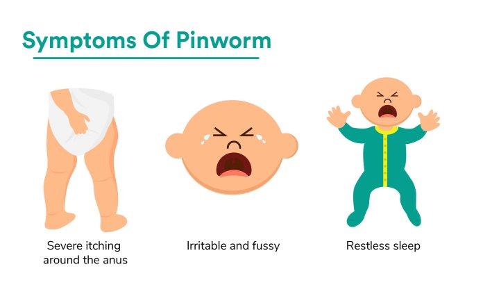 symptoms of enterobiasis)