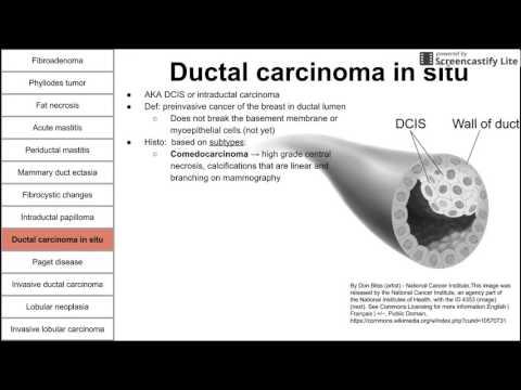 infecție helmintică a bolii