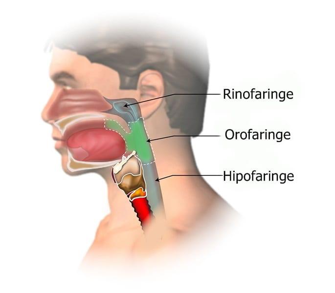 cancer nazofaringian simptome