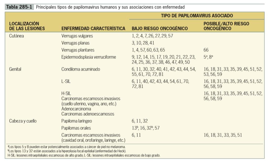 papillomaviridae tratamiento)