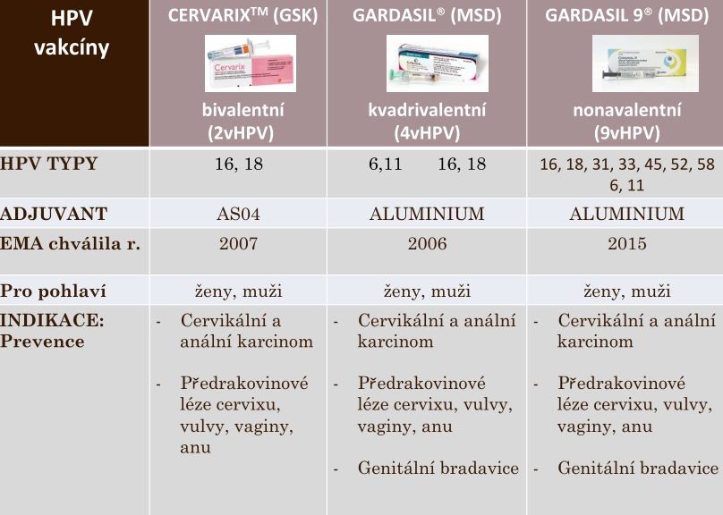 Hpv vir ockovani. A papilloma is a type of malignant tumor