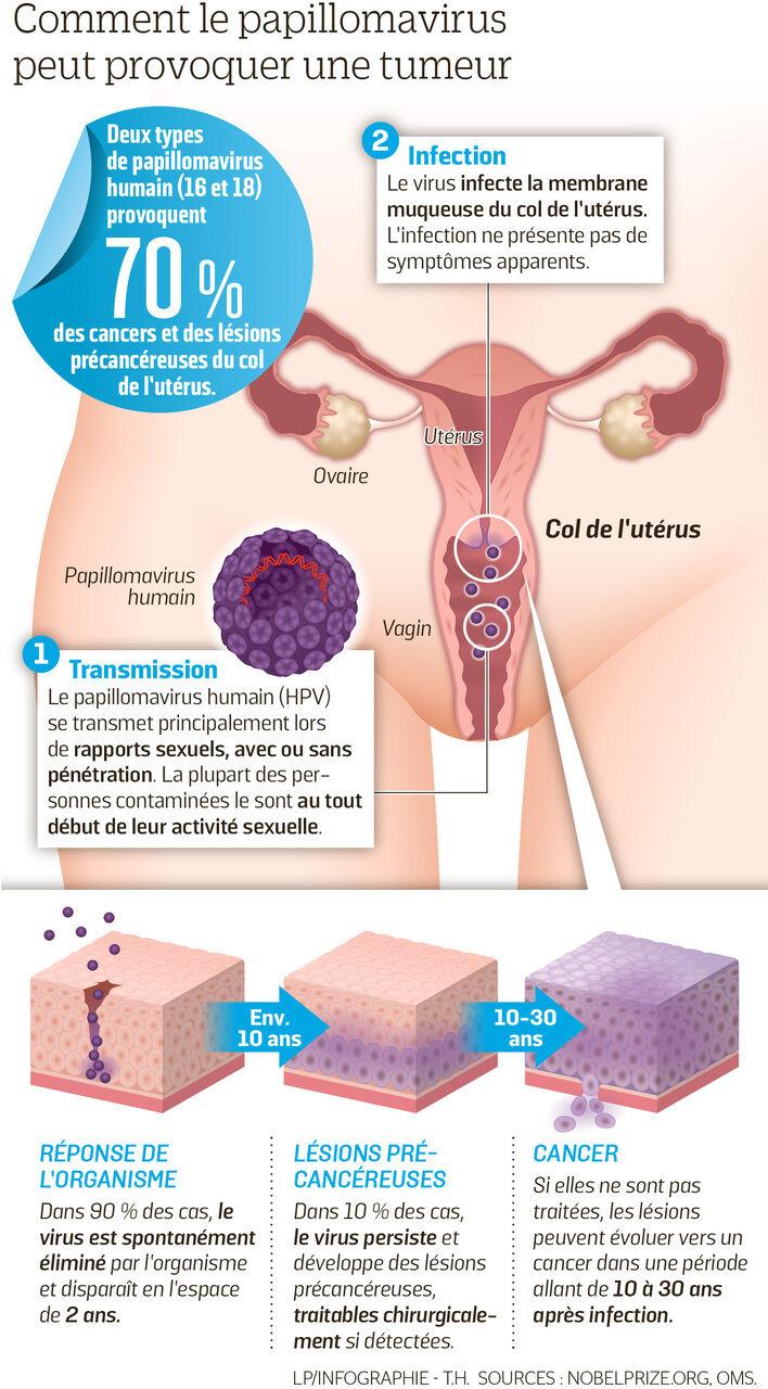 origine du papillomavirus