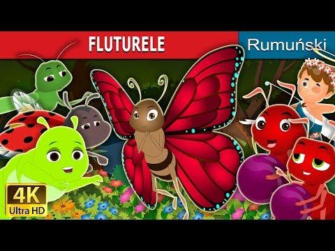 Fluturi - Camera copilului - info-tecuci.ro