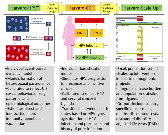 human papillomavirus in uganda