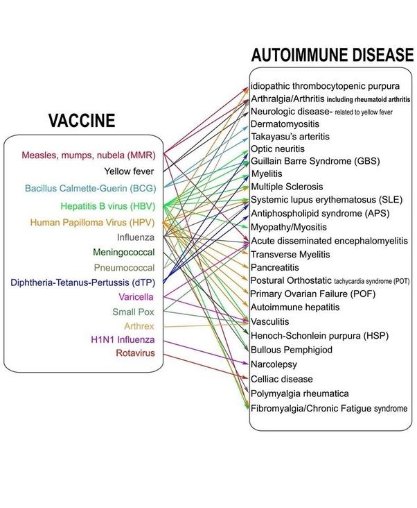 hpv virus and autoimmune disease)