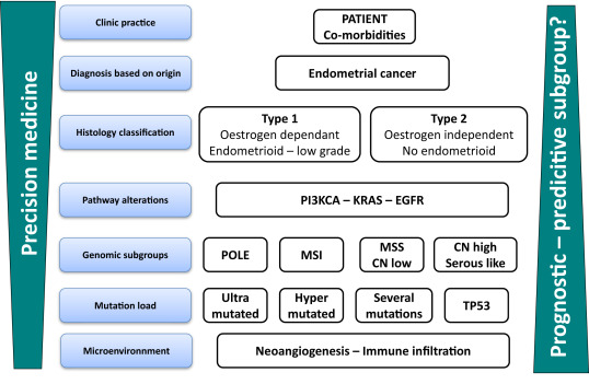 endometrial cancer hormonal therapy