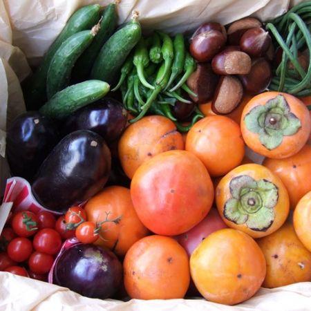5 sfaturi pentru detoxifierea de toamna | ORGANIC INDIA Romania