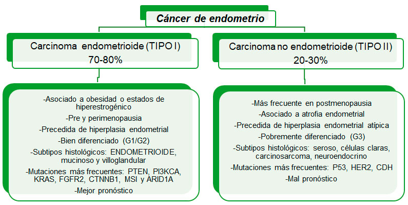 cancer endometrial y embarazo cele mai eficiente pastile pentru helminți