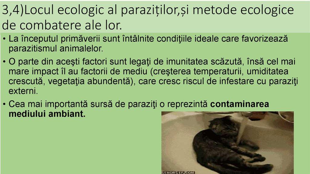 prevenirea paraziților din organism)
