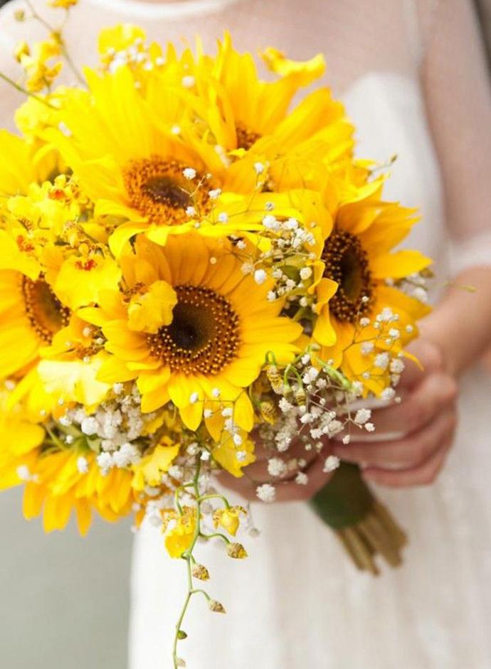 tenă în floarea soarelui