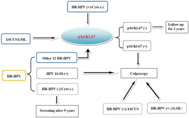 human papillomavirus p16)