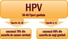 cum se identifică negii cervicali